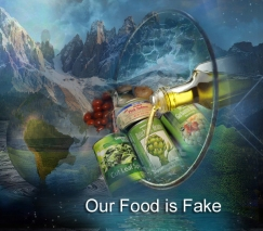 our food is Fake